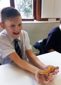 boy-holdng-little-lizard
