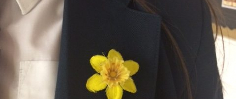Springwest award their first brand new bronze reward badges.